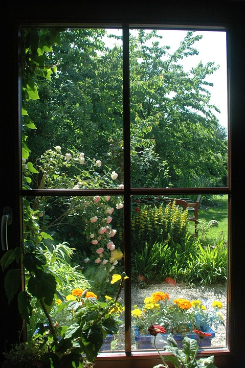 Window Garden View