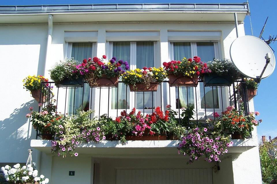 Flowers-Apartment-Balcony