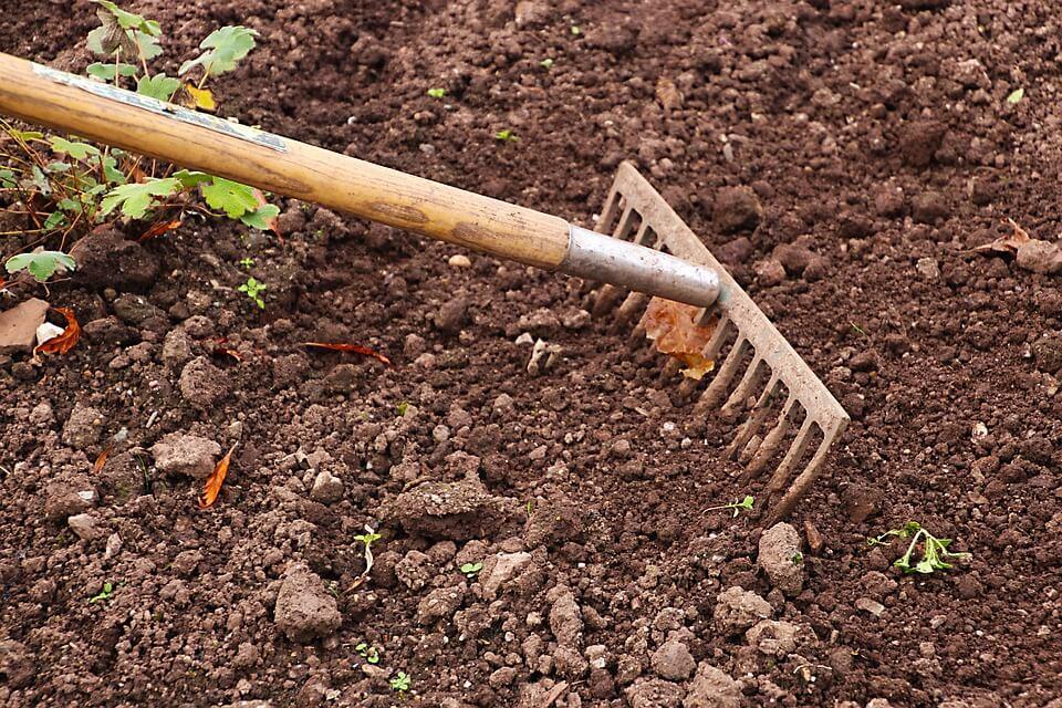 rake for gardening