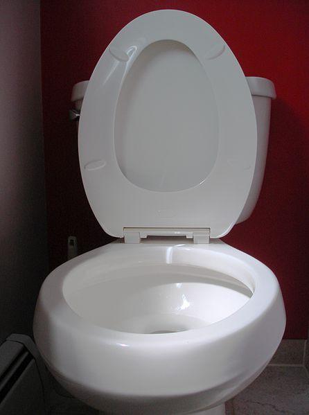 round toilet bowls