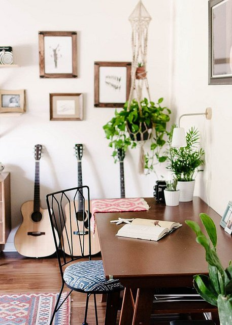 indoor flowers for clean air