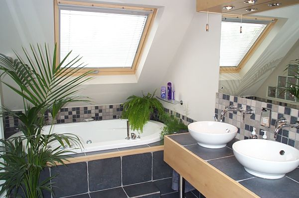 bathroom with skylight