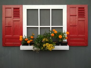 Different Types of Windows to Consider for Your House