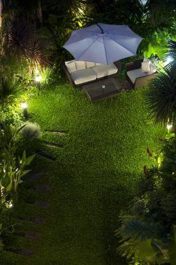 green backyard