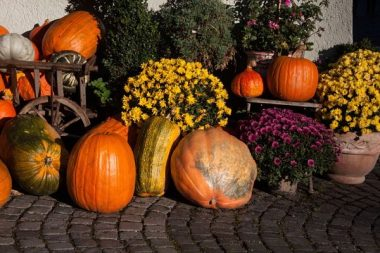 15 Affordable and Beautiful Ideas for Your Fall Porch Decor