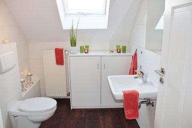 Tank-less toilet