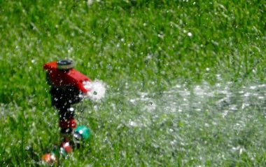 A Perfect Sprinkler System Installation Guide for Your Garden