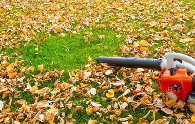 Electric Leaf Blower Options for This 2020