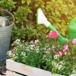 Garden Maintenance Tips Every Gardener Must Know