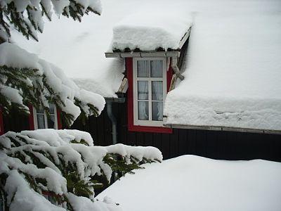 prepare windows for winter