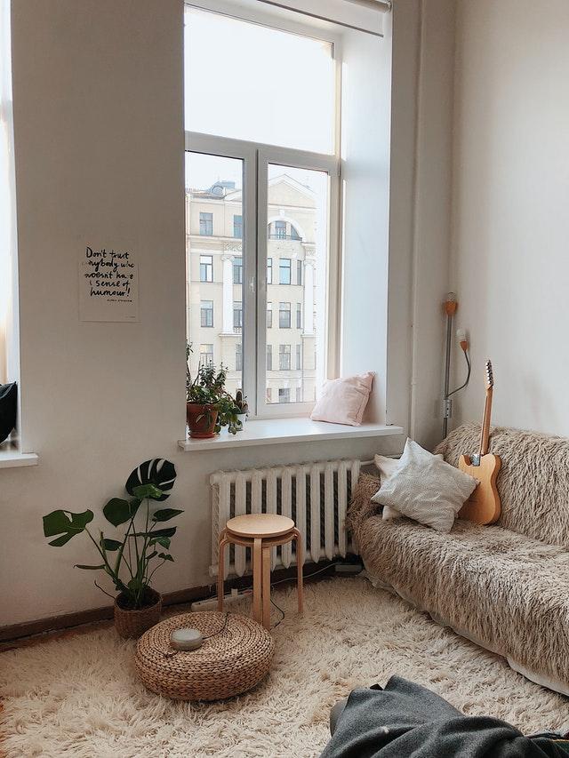 indoor plants for my rental home